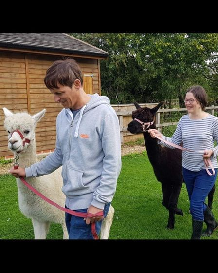 Katharine and Louis Falconer moved to Norfolk to start an Alpaca farm.