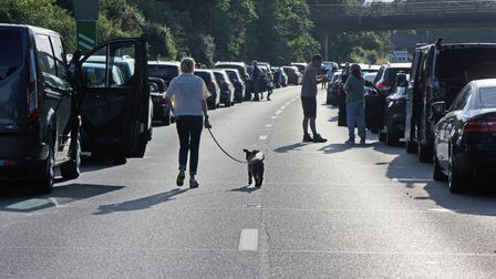 A person walks their dog on the A14