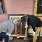 Sarah Cove inspecting the backof one the Fanshawe paintings