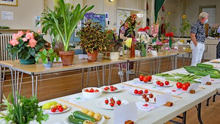 Entries on a table for Bardfield Horticultural Society's Summer Show, Great Bardfield, Essex