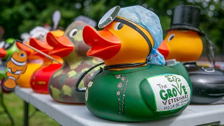Previous ducks at the corporate duck race.