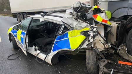 Swain was sentenced to two years in jail following the crash
