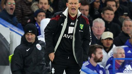Norwich manager Alex Neil knows the Canaries are playing for high stakes. Picture by Paul Chesterton