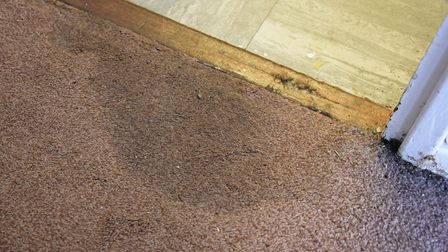 Damp carpets and floors at Wendy Melling's bungalow at Canterbury Place, which is causing Wendy to h