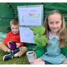 Jessica and Oliver Skilton of Bury St Edmunds grew and sold plants to help Suffolk Hedgehog Hospital
