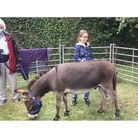 Miniature donkey Rubik captivated youngsters at Beccles Library.