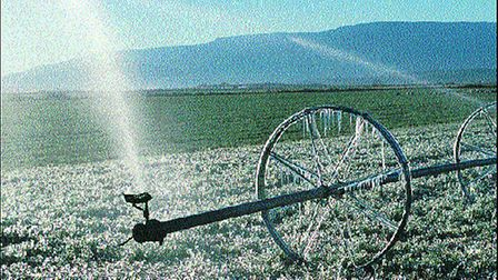 Keep-up-with-your-crops--water-b18003cc