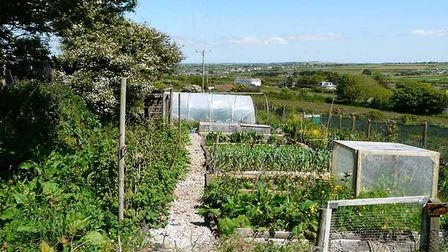 Growing-on-a-smallholding-d424dbf8