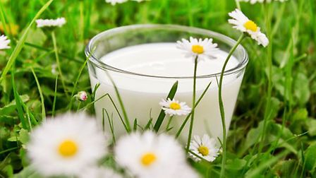 Sales of organic dairy produce is growing strongly