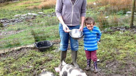 'Rookie' Andy Richards with his nephew Jack and the pigs at their smallholding in Snowdonia