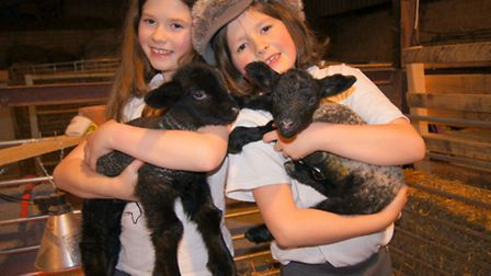 The girls with their lambs