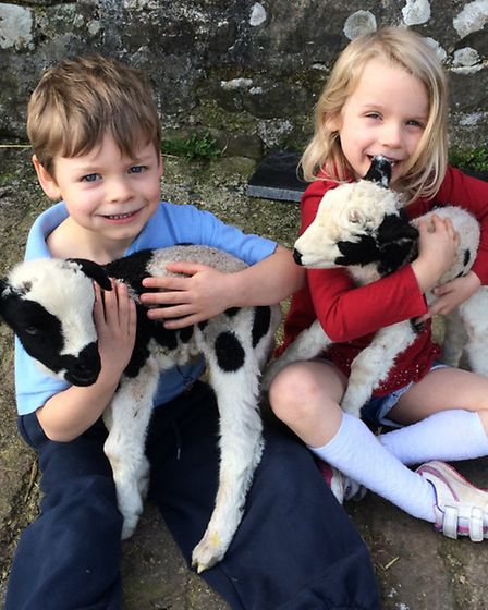 Twins Aaron and Emily-Ann, 6, with first lambs
