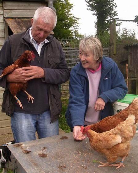 Roger and Alison Parmley with some of their laying hens