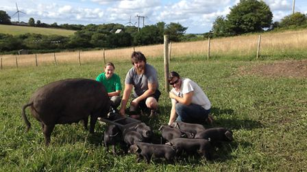 Mandy, Ben and Nerissa with a sow and piglets