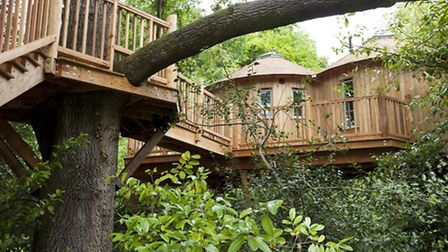 The Harptree Court treehouse