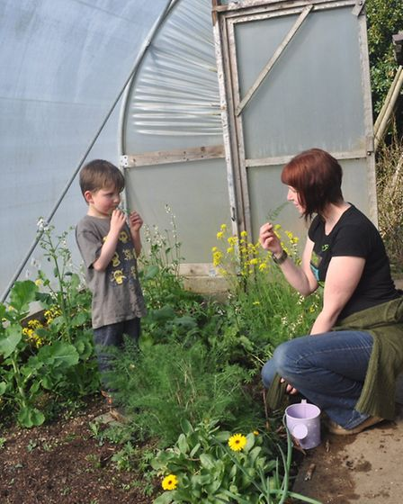 Kim Stoddart and her son picking fennel