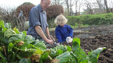 Katie Beat's daughter with her grandad in the veg patch