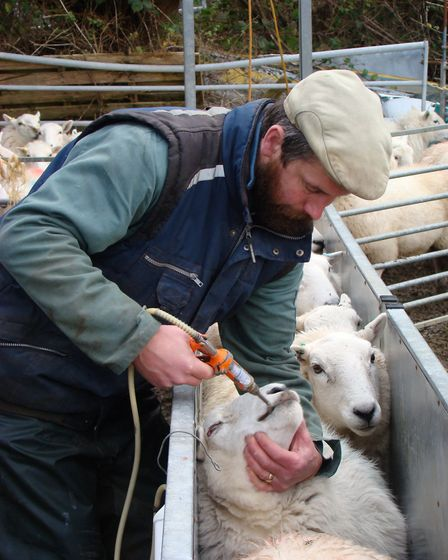 Carry out routine tasks in advance of the breeding season (photo: Tim Tyne)