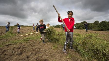 All ages can take part in spreading green hay from a wildflower meadow (photo: Plantlife)