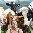 McDonald's UK and PCF are inviting dairy and livestock farmers in England to attend their latest web