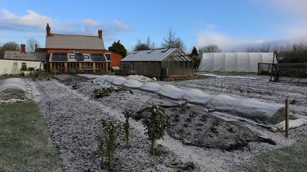 Homeacres view (12th Feb 2018) after light snowfall with beds mulched and mostly empty Credit: Char