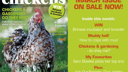 Our March issue is now on sale!