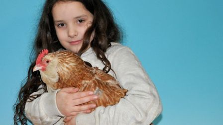 Best Junior handler Angel Kage with a Faverolle large fowl hen at the Northampton & District Poultry