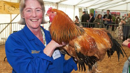 Victoria Roberts is one of the country foremost poultry vets