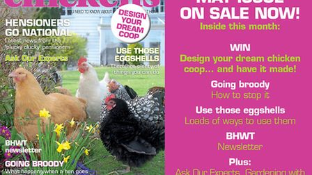 What's inside our latest issue...