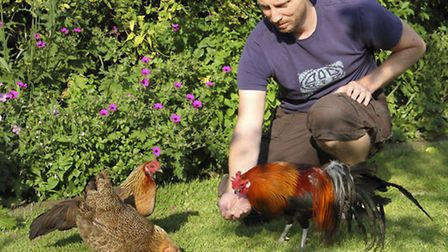 Chris with some of his chickens