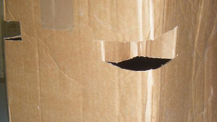 Cardboard box with adequate, escape-proof air holes on all four corners