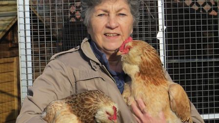 Jackie Adams holding her plucky Faverolles Cochi, on her right arm, and a younger bird on the left o