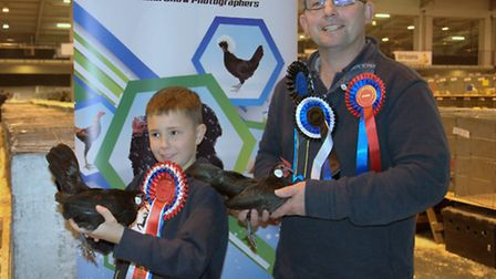 Supreme Champion - a Rosecomb female from Stephen Taylor and junior champion Thomas Marsh