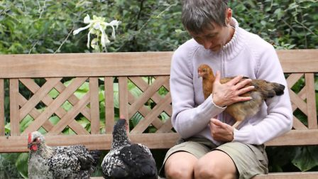 You'll find that some of your flock enjoy being handled, happily sitting on your lap whilst others p