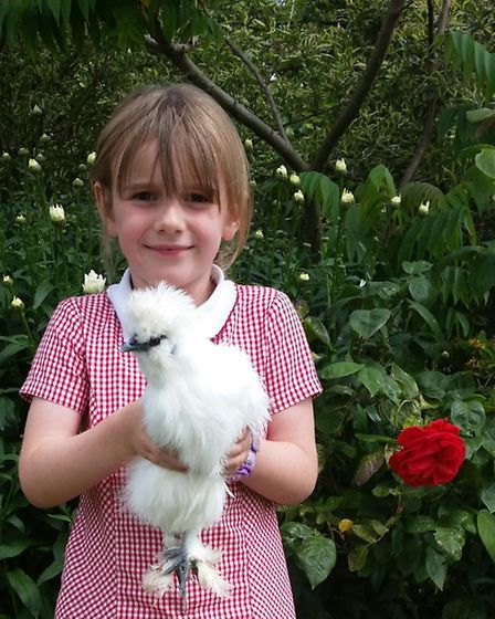 Evie with a white bearded Silkie bantham