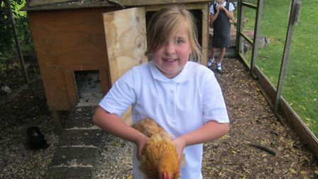 Chickens have proved a big hit with the pupils at Stanford- in- the Vale Primary School