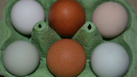 My differently coloured eggs