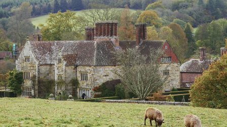 Manx Loaghtan sheep grazing by the house at Bateman's, East Sussex (photo ©National Trust Images/H B