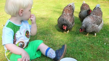 Children and chickens go together!