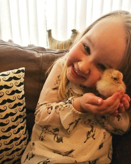 Happy that new chicks have arrived