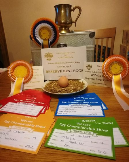 Awards galore at the Wessex sho