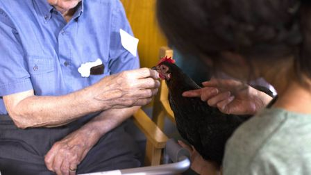 A care home resident meets a chicken