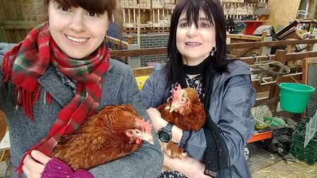 Furry Tales - Merlin and Jane with the chickens