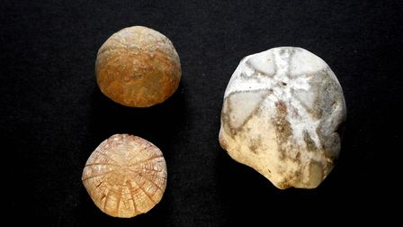 Fairy loaves from Mal Corvus Witchcraft & Folklore artefact private collection owned by Malcolm Lidbury