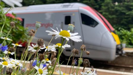 Train operator Greater Anglia wasthe first transport provider to take the WildEast pledge