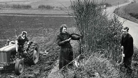 Mrs B Lake ran a 58-acre mixed farm at Great Hautbois with the help of Mr D Andrews and her 17-year-
