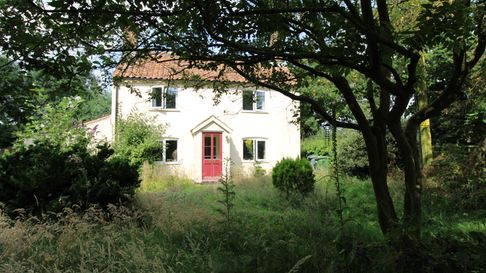 Large peach-coloured farmhouse with a red door surrounded by overgrown grass and trees