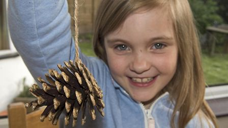 Put a string on your pine cone - and then squeeze in as much of the bird seed mixture as you can.