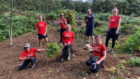 Recent GoodGym Norwich tasks have included clearing bracken on Mousehold Heath
