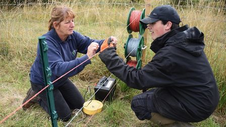 Pam Reynolds, support worker putting up a fence with Ashley Ferguson, at Clinks Care Farm, Toft Monk
